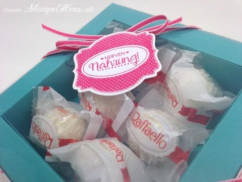 Stampin Up - Stempelherz - Verpackung - Box - Schachtel - Nervennahrung - Geschenk - Ach du meine Gruesse - Framelits Etikett Kunst - Verpackung Nervennahrung 04