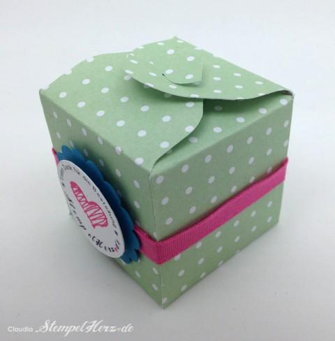 Stampin Up - Stempelherz - Box - Verpackung - Spruchreif - Anleitung - Envelope Punchboard - Box Vielen Dank 03