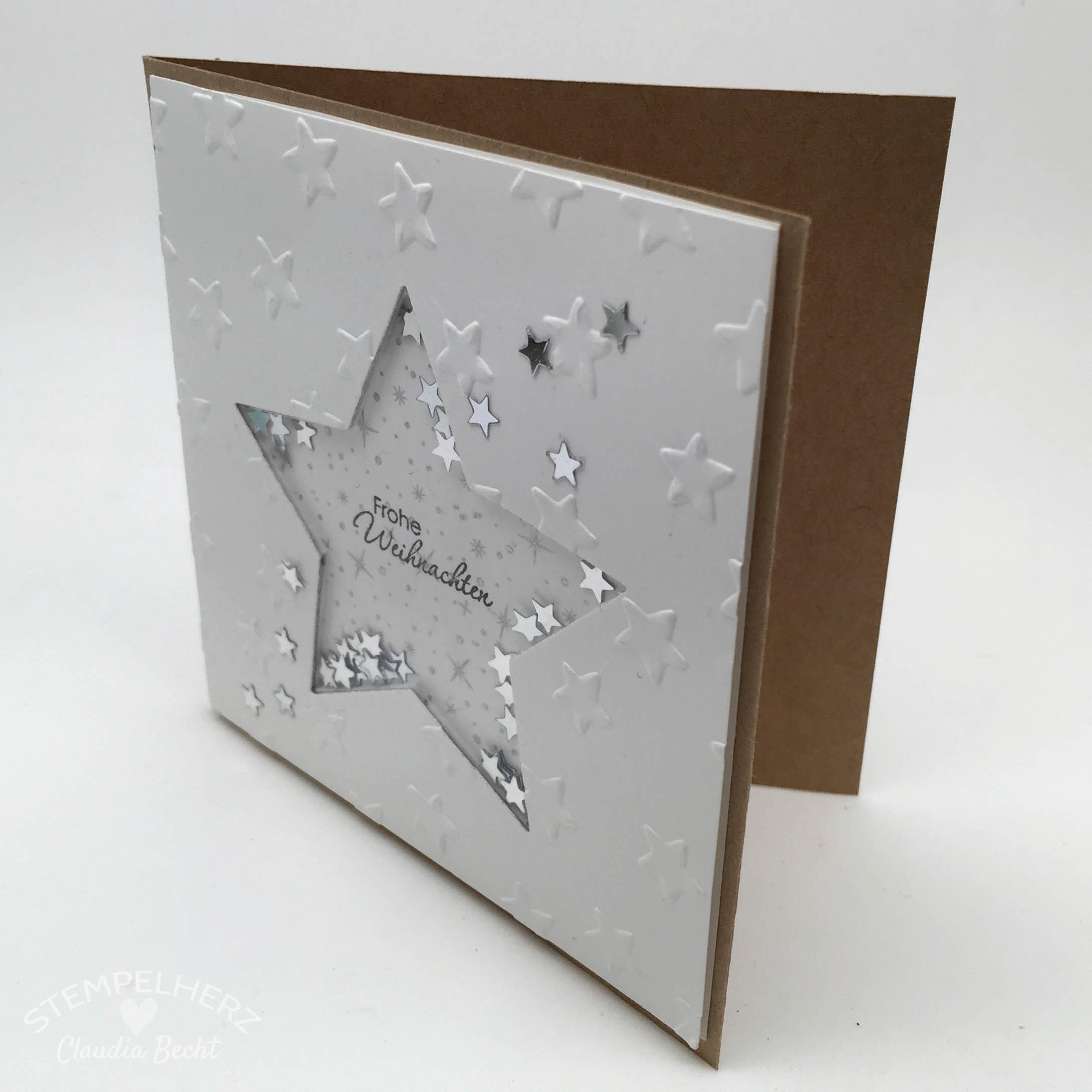 eine weihnachtliche sch ttelkarte stampin 39 up mit. Black Bedroom Furniture Sets. Home Design Ideas