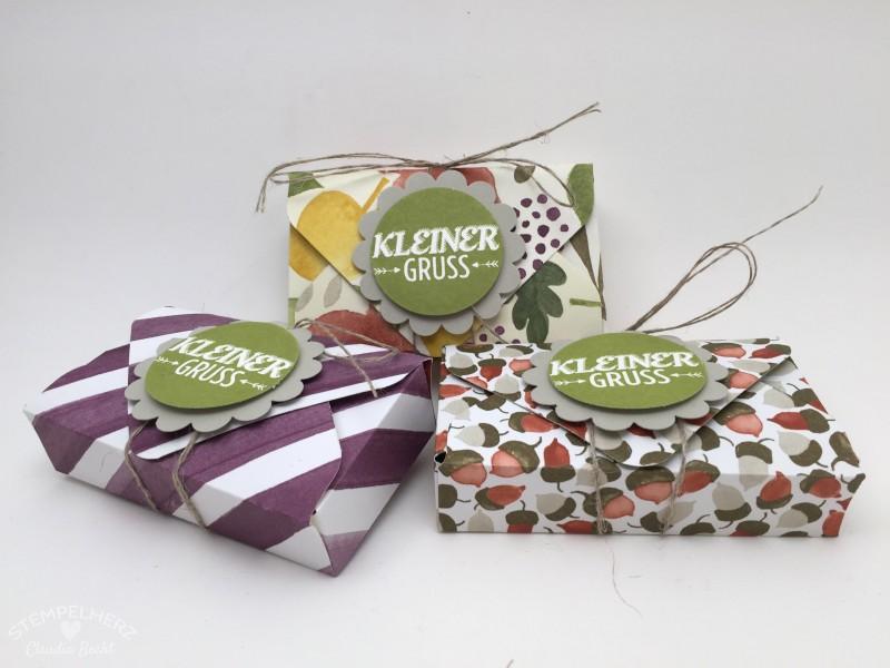 Stampin Up - Stempelherz - Verpackung - Box - Envelope Punchboard - Verpackung fuer Lindt Hello Riegel Kleiner Gruss 01