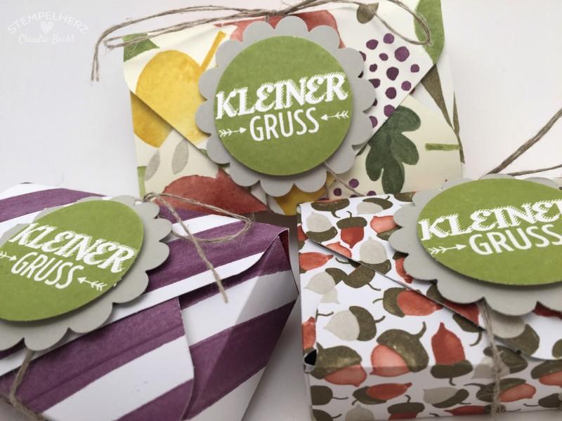 Stampin Up - Stempelherz - Verpackung - Box - Envelope Punchboard - Verpackung fuer Lindt Hello Riegel Kleiner Gruss 04