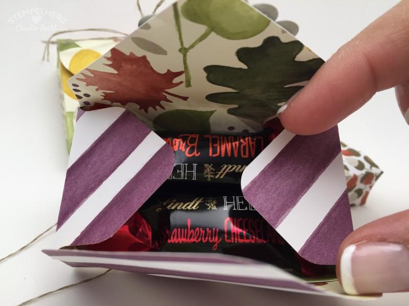 Stampin Up - Stempelherz - Verpackung - Box - Envelope Punchboard - Verpackung fuer Lindt Hello Riegel Kleiner Gruss 05