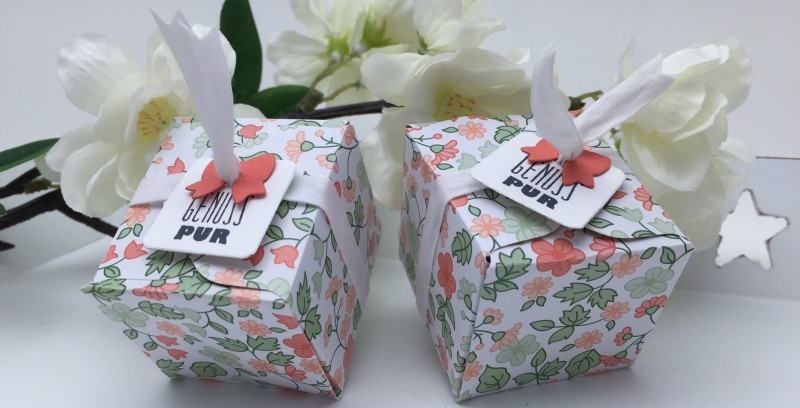 Stampin' Up! - Stempelherz - Verpackung - Box - Mitbringsel - Tee - Tee-Verpackung 02