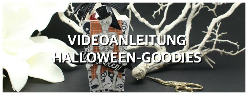 Videoanleitung Halloween-Goodie Skelett