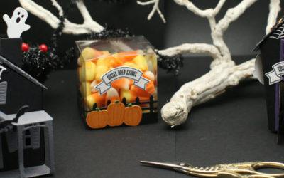 Frohes Gruseln – Halloween-Projekte