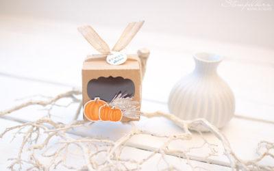 Herbstliche Cupcakebox